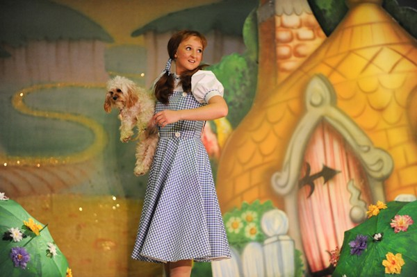 The Wizard of Oz 11