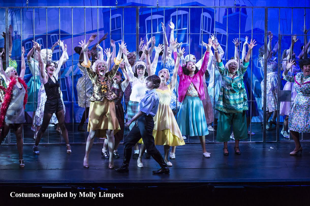"""hairspray musical But when asked about the happy ending, writer john walters said, """"this is  musical comedy who needs the ugly truth i gave hairspray the."""