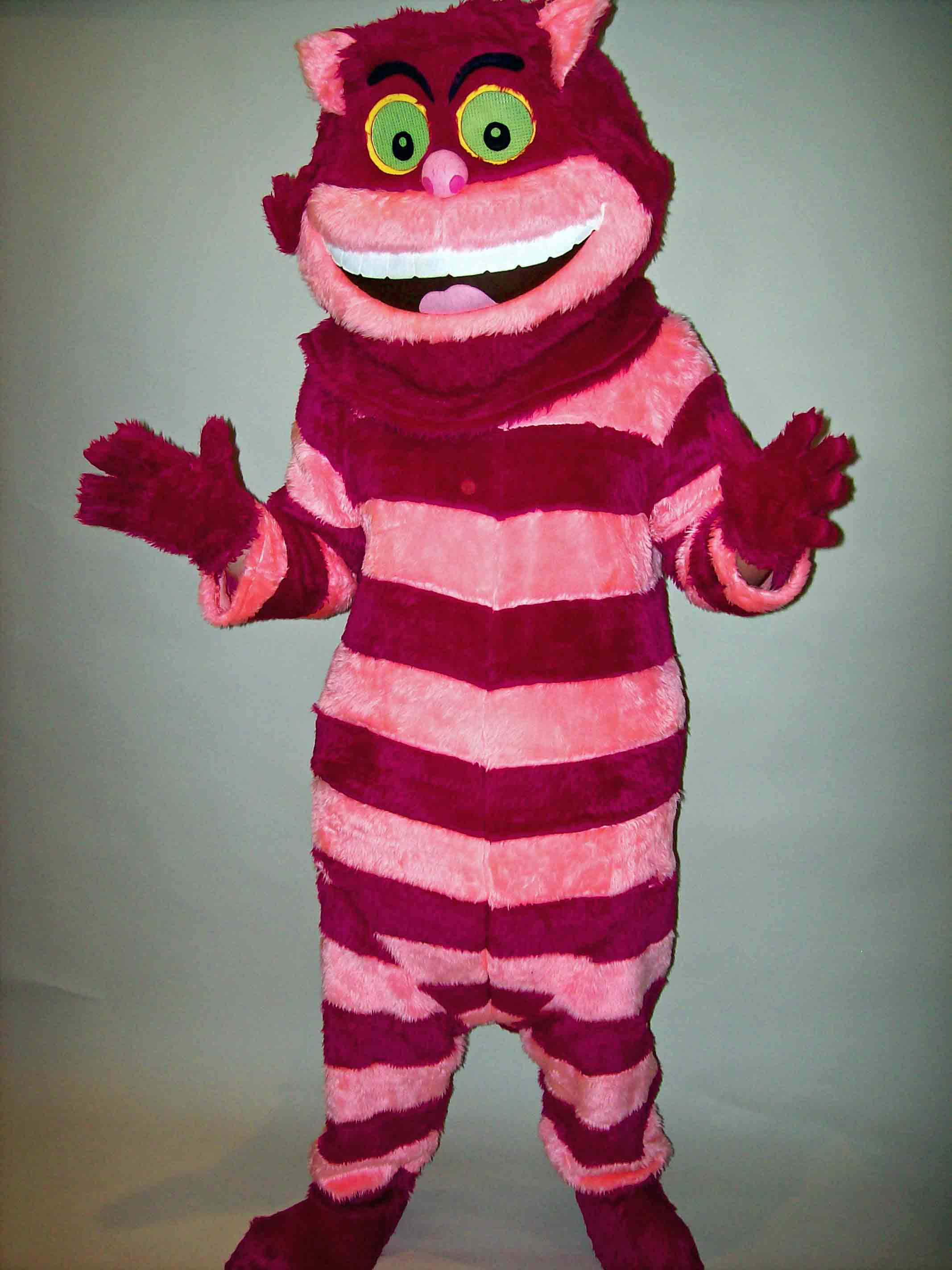 Cheshire Cat & Quality Mascot u0026 Character Costumes for Hire