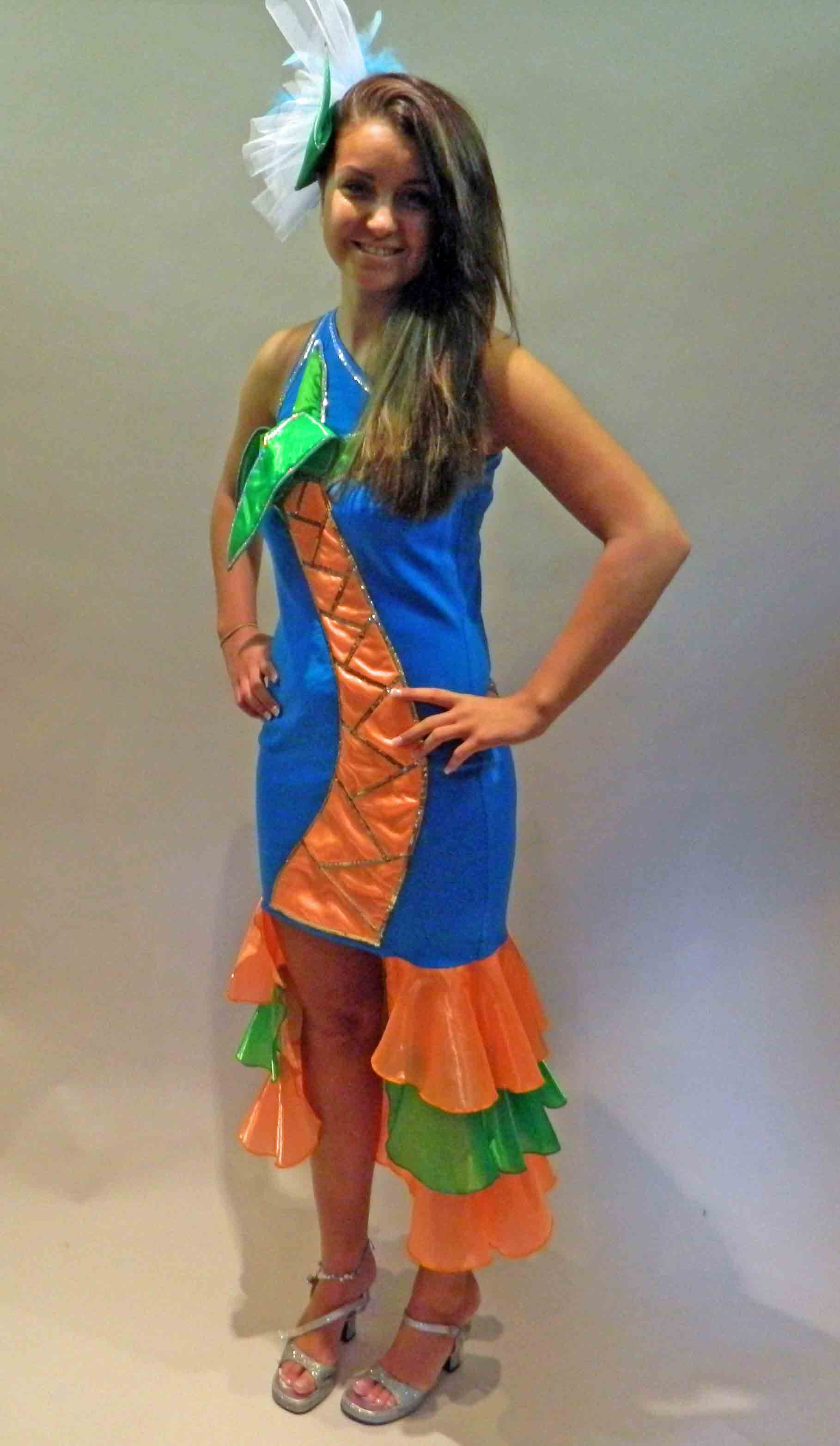 Fancy dress costumes for hire