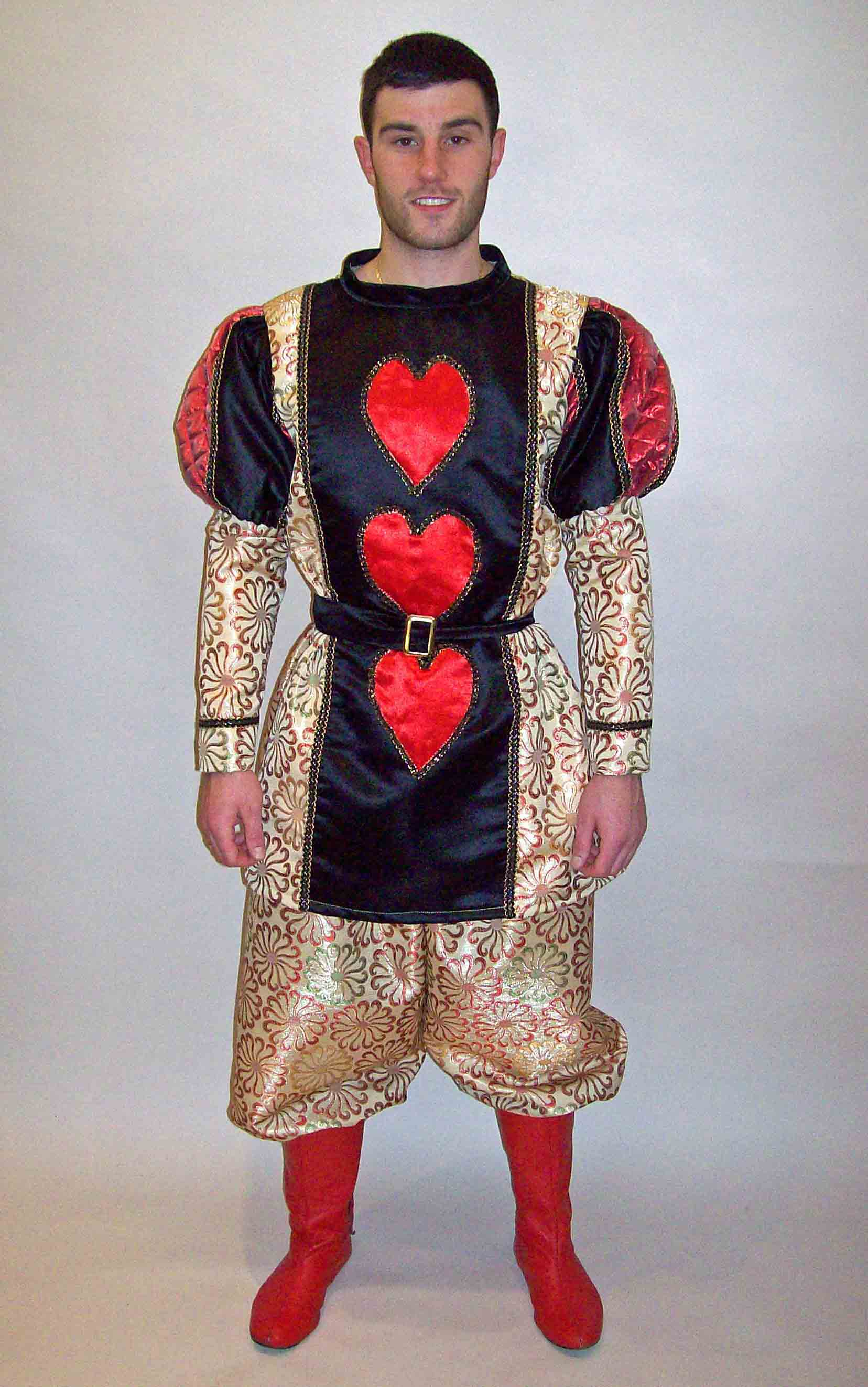 Quality fancy dress costumes for hire, film themed fancy ...