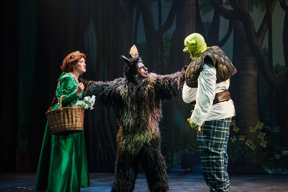 costumes for princess fiona