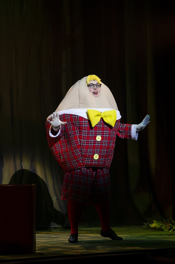 shrek costume for humpty dumpty