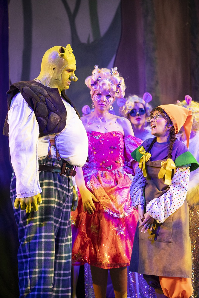 shrek the ogre costume hire