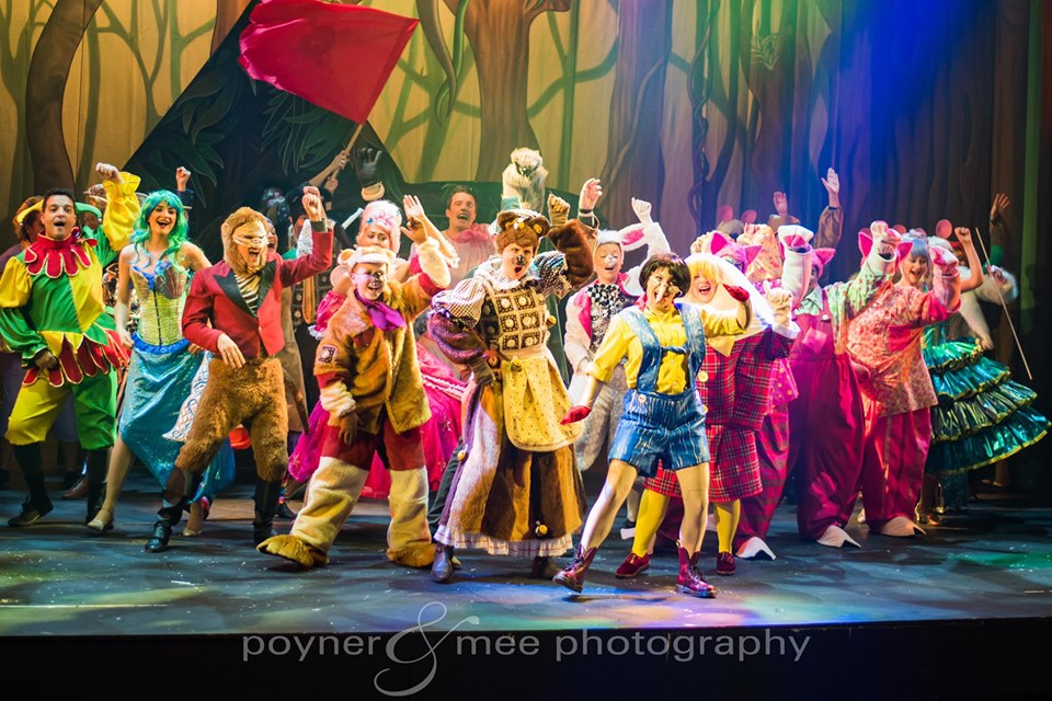 ensemble fairytale character costumes for shrek